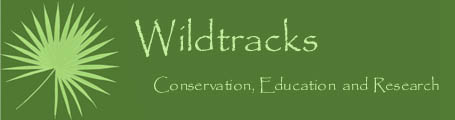 Wildtracks logo